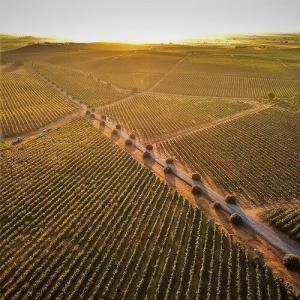 If you think this is beautiful - then wait until you taste Herdade Grande's wines
